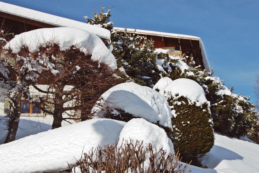 Au Pays du Mont-Blanc (3)