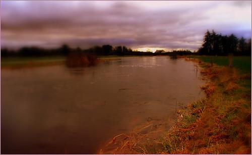 Flooded Suir