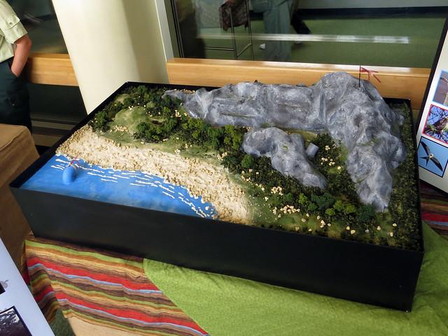 Raptor Migration display