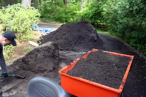 new garden 8026