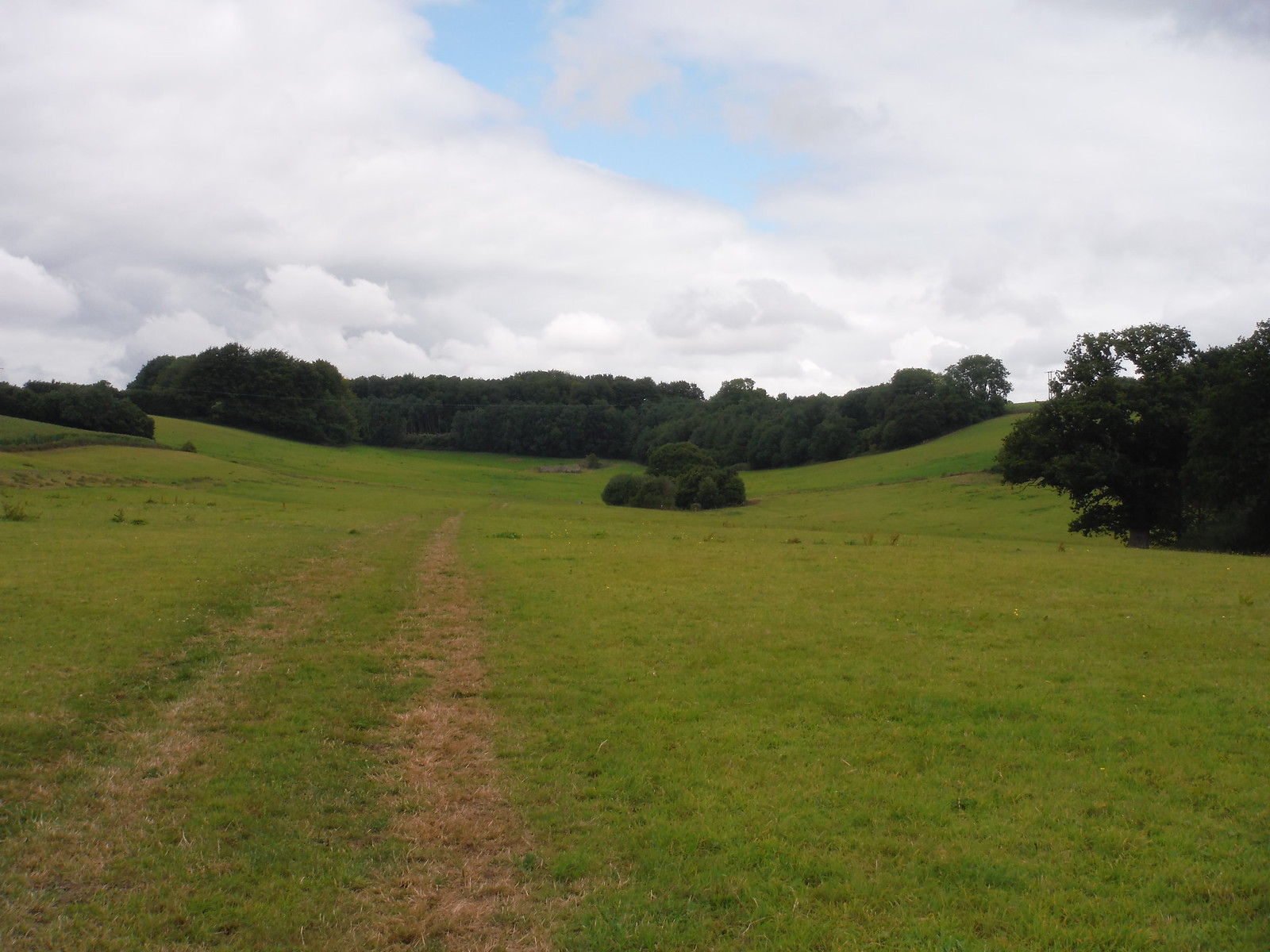 Valley NW of Wick Wood Farm SWC Walk 252 Tisbury Circular via Donhead St. Andrew