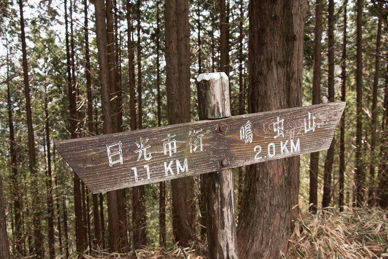 20150425-鳴虫山-0131.jpg