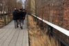 Bricks, Grass, Promenade (High Line/NYC)
