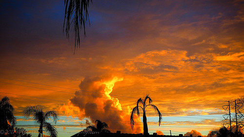 12x40 aroundthehouse clearwaterfl feb2017 fspiclrpic m1 scenes skies sunset
