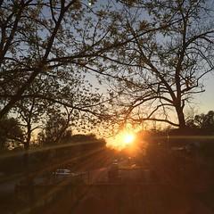 13 March 2017 #sunset #samespotforayear #nofilter #vso #vsocam #sunsetporn