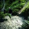 石段の木漏れ日