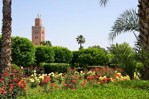 Marrakech (Maroc)  - Koutoubia - Jardins