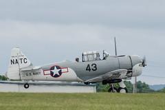 Texan-56013