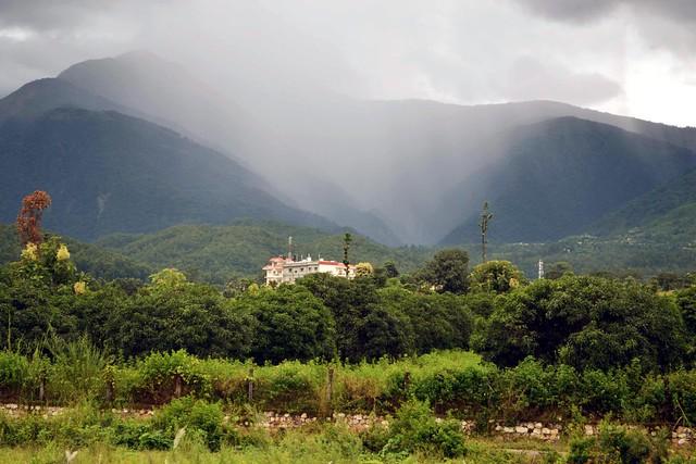 Dehradun Rains