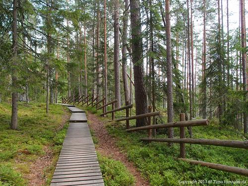 nature walking nationalpark path olympus kansallispuisto helvetinjärvi helvetinkolu helvetinjärvenkansallispuisto xz1