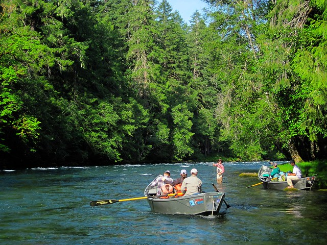 There s no place like eugene the caddis fly oregon fly for Fishing eugene oregon