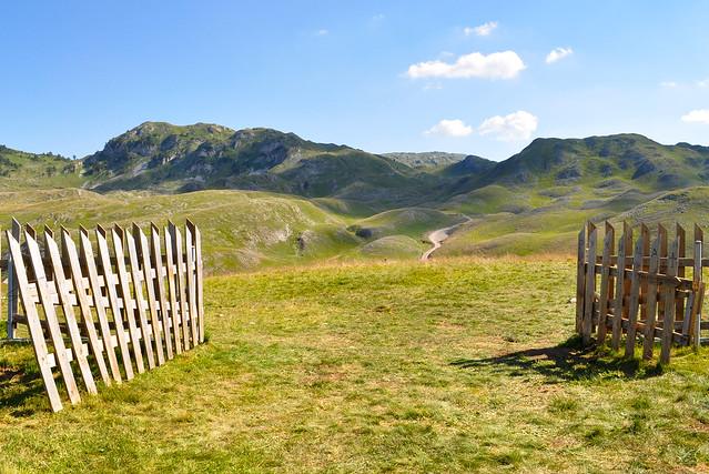 mountain sinjajevina, montenegro