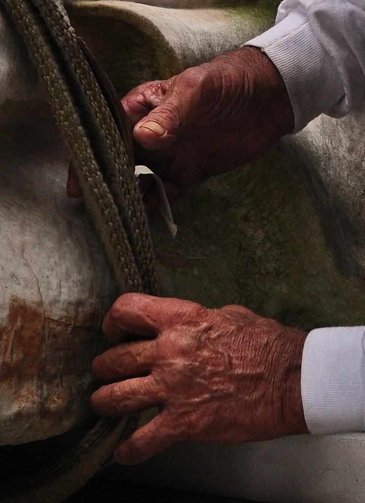 Rembrandt Hands