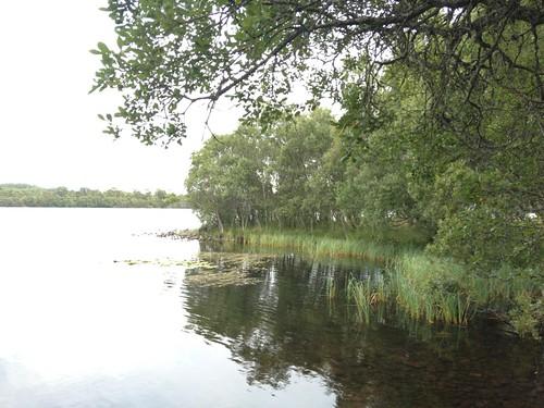 Loch Kinold