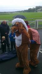 Panto Horse Race at Aintree Racecourse