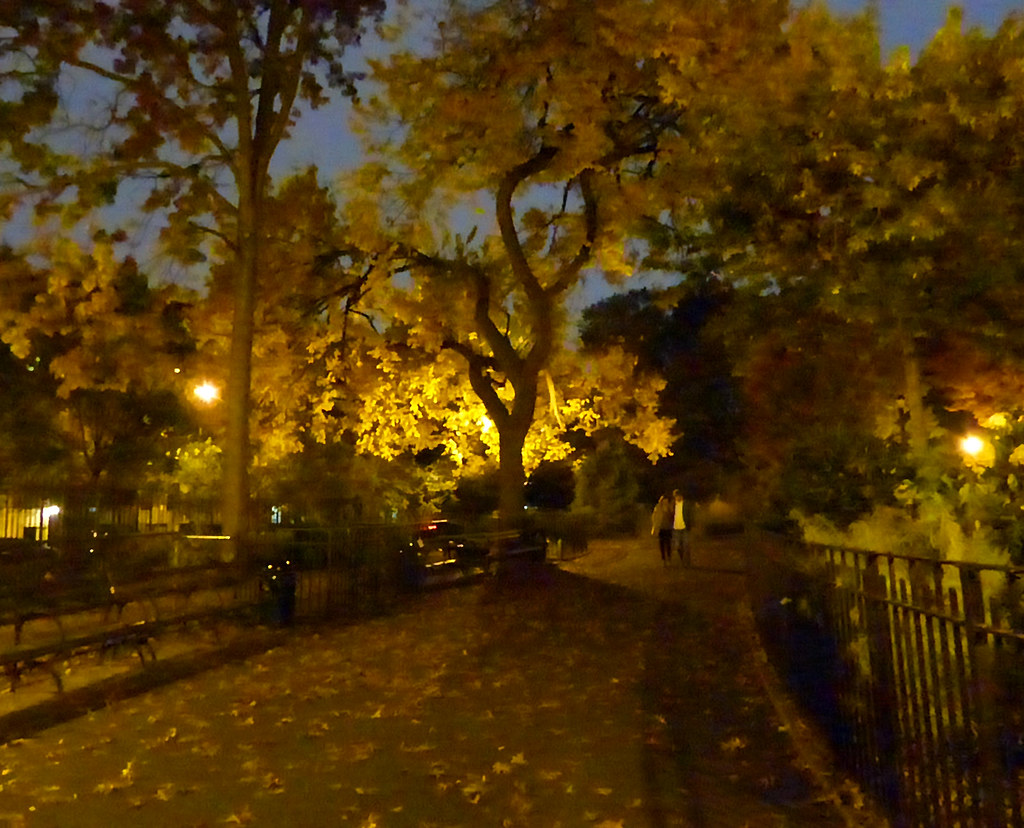 Night in Tompkins Square