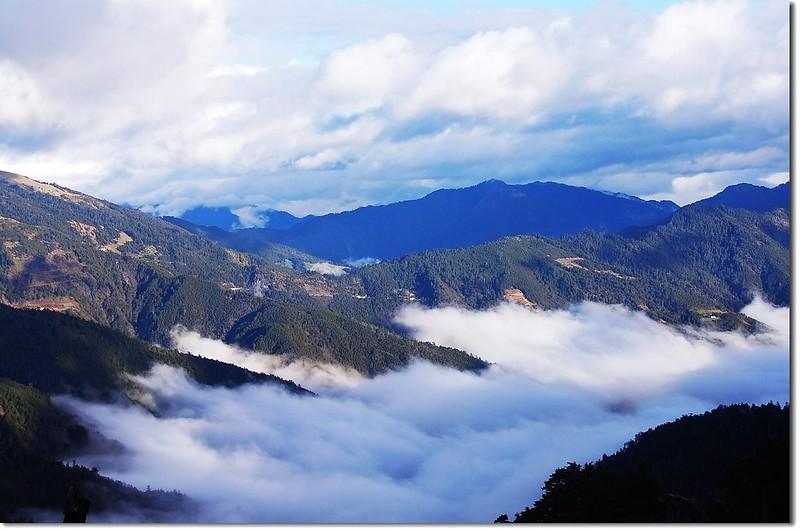 雲海(From 奇萊山登山步道) 3