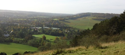 View from Box Hill of Dorking, and part of Denbies Vineyard