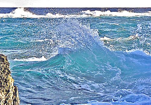 ocean sea water coast surf wave spray atlantic sediment shore foam naturereserve limestone bermuda geology atlanticocean boiler breaker southshore christmascard carbonate stgeorgesparish familychristmascard coopersisland coopersislandnaturereserve boilerreef algalcupreef gurnethead