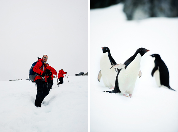 RYALE_Proposal_Antarctica-2
