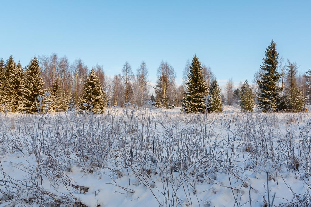 2014-Russia-Karelia-Onemyday2-008