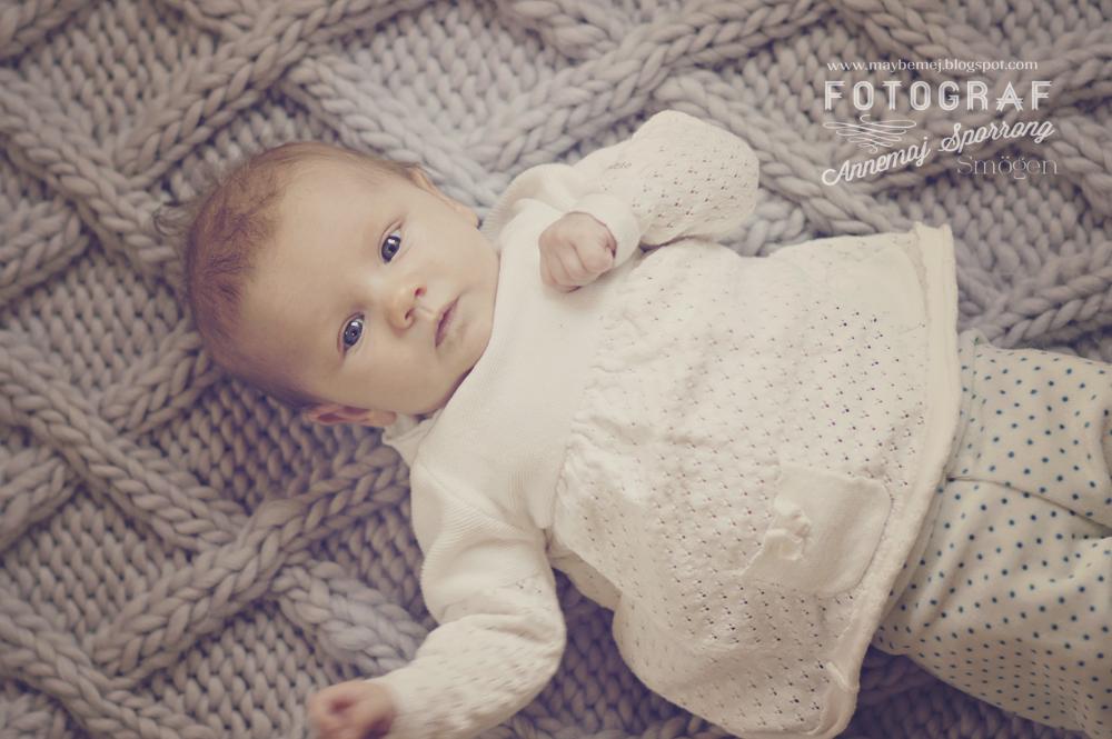 barnfotografering Smögen
