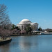 Thomas Jefferson Memorial (95/365)
