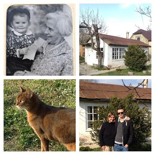 Смена поколений в одном отдельно взятом доме в Крыму. Между первой и последней фотографией - 47 лет #крым