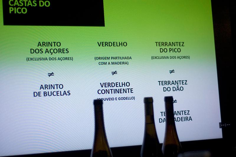Vinhos do Pico, castas