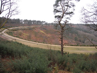 Devil's Punch Bowl and old course of the A3
