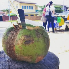 Having a good classic coconut by the roadside. 😂😂 haha.. uncle, did you just said I have eyes like logan seed?   #traveltheworldwithvelverse #travelogue #velverse2017travel #instatravel #malaysia #ipoh #igmy #velverseinvadesipoh  #velverseiseating