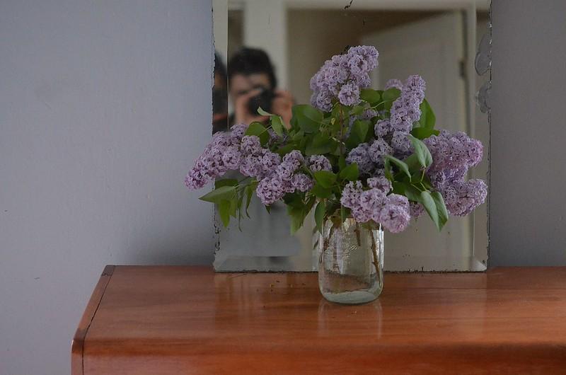 spring flowers_556