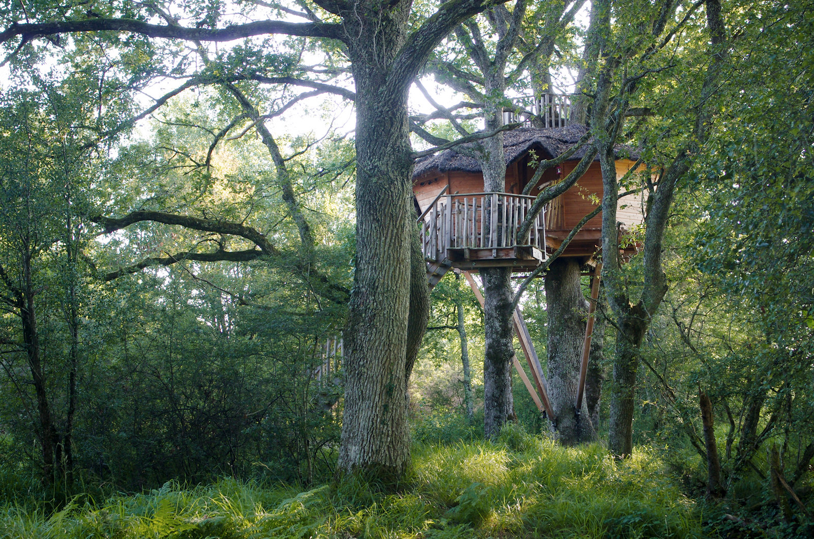 Dormir dans les arbres - les cabanes de Chanteclair