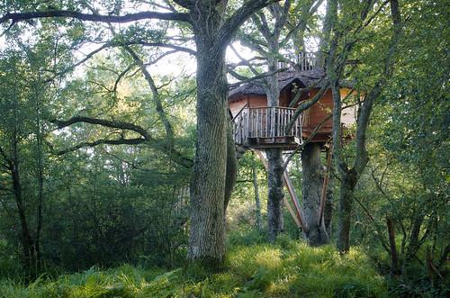 Dormir dans les arbres - une intégration idéale parmi les arbres