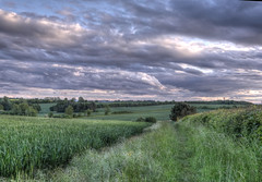 View from Thaxted