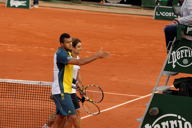 David Ferrer and Jo-Wilfried Tsonga