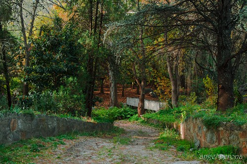 Otoño en San Javier_DSC_1356