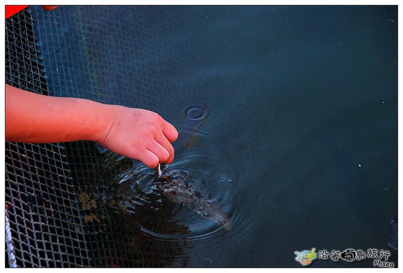2013元貝休閒漁業_92