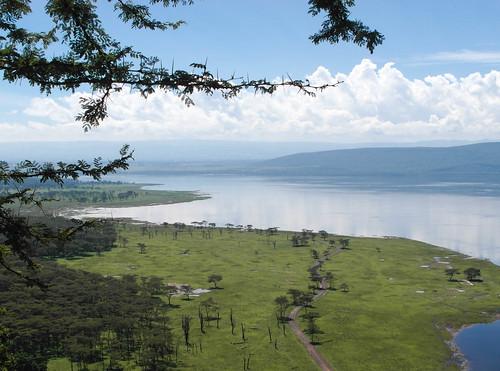 cliff kenya baboon nakuru kenyaandtanzania2012