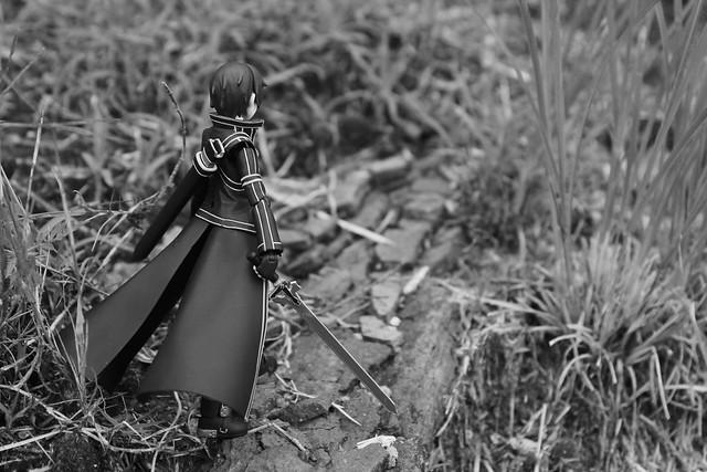 black and white trail