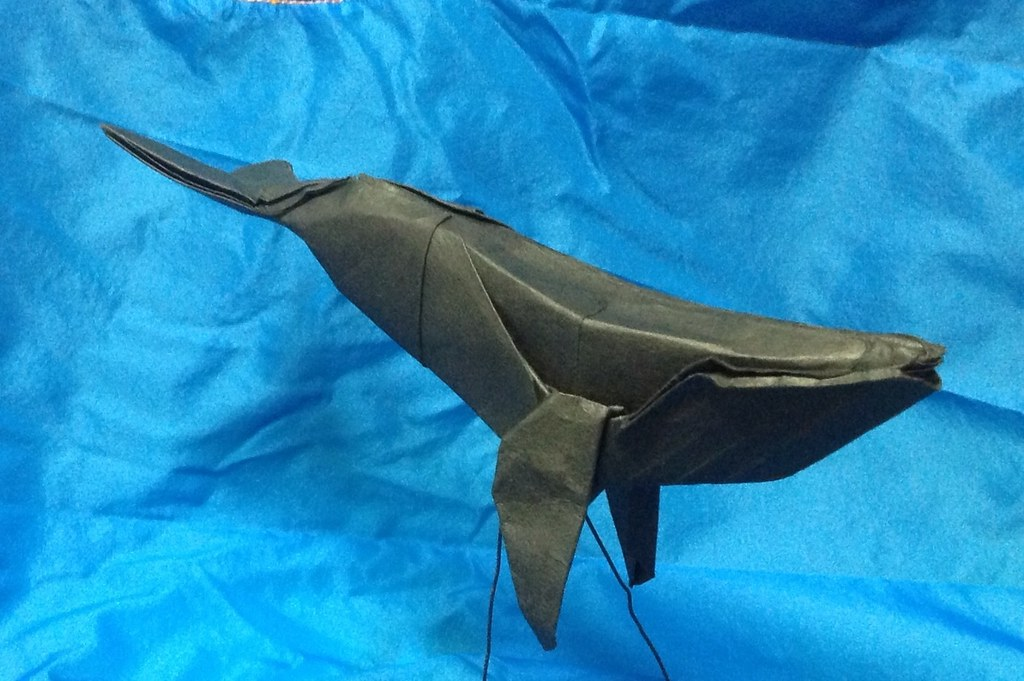 Humpback Whale By Paper Folding Artist Redpaper