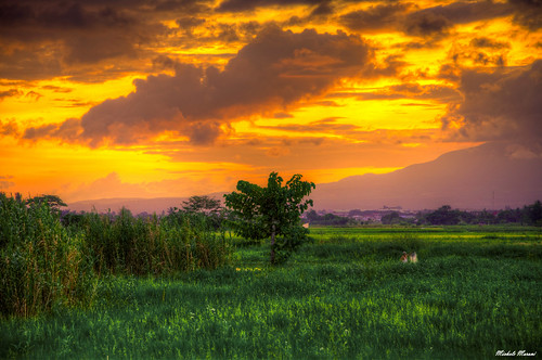 sunrise colorful rice hdr naga 3px isarog camaligan