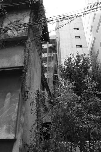 牛腸茂雄展「見慣れた街の中で」を観に行った