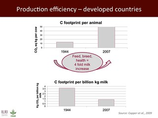 Production efficiency--developed countries