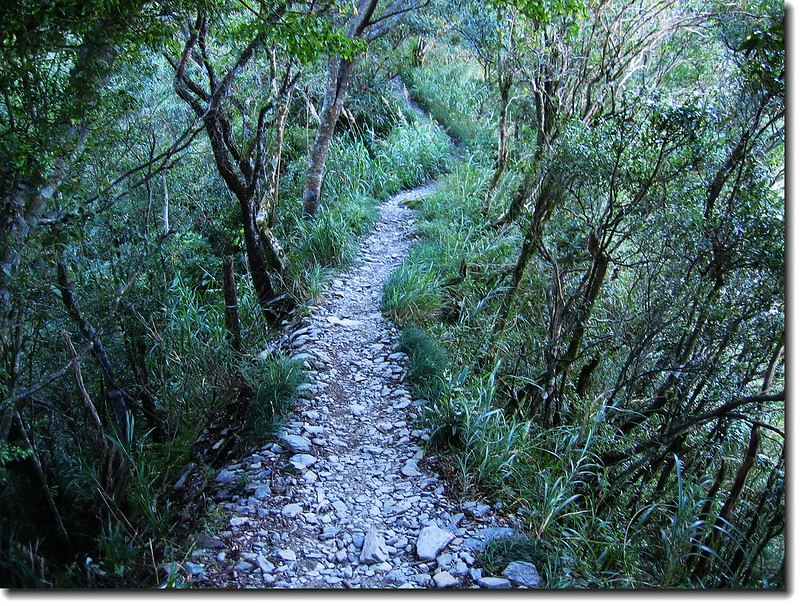 登山步道 2