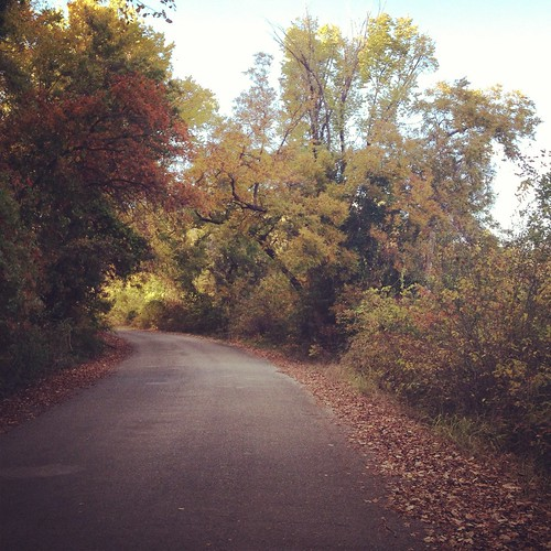 Fort Worth nature center on a perfect Fall day. We had a romantic picnic and hiked around.