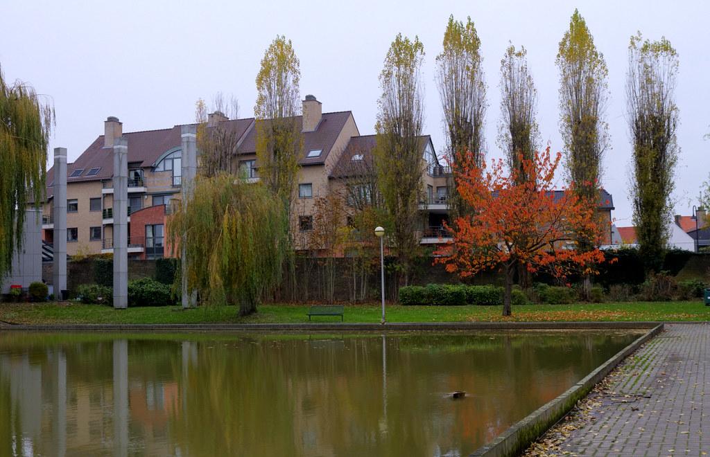 Tongeren Pond