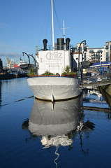 Cruz reflections, Water of Leith, Nov 2013