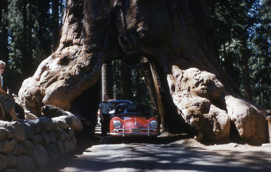 Porsche 356 at Wawona