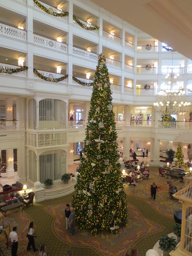 Giant tree at the Grand Floridian